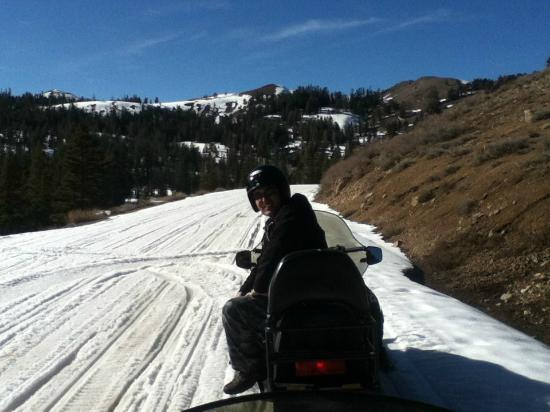 Lake Tahoe Adventures & Nevada Adventure Company: Snowmobiling in Hope Valley (Summit Tour)