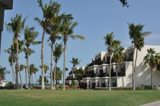 JA Palm Tree Court: Beachfront rooms