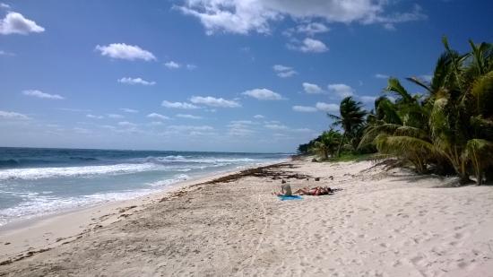 Cenote Encantado: La plage