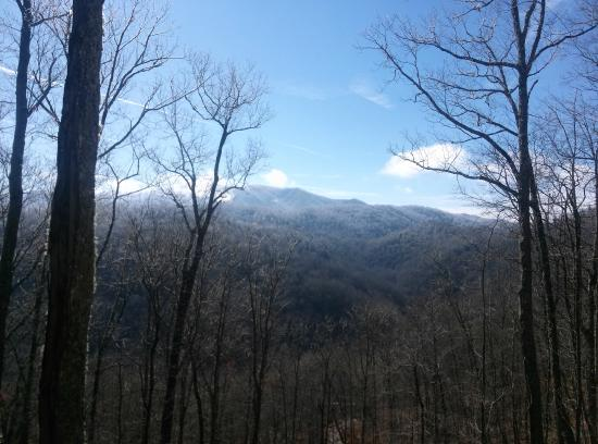 Cherokee Mountain Cabins: View from the porch!