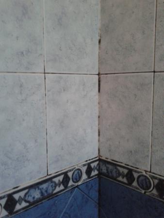 Posada Emanuel: moho en el baño
