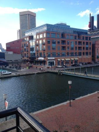 room with a view only+ - Picture of Pier 5 Hotel Baltimore, Curio Collection by Hilton ...