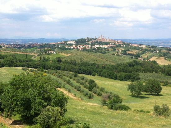 Hotel Pescille : Overlooking the countryside