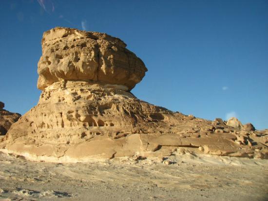 Dahab Safari Day Tours : внизу древние петроглифы