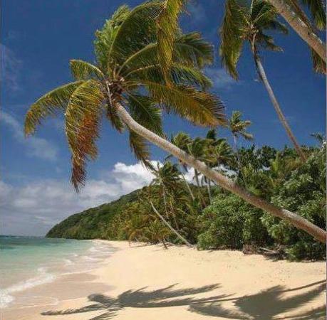 Savusavu, Fiji: Our pristine beach on Namena Island
