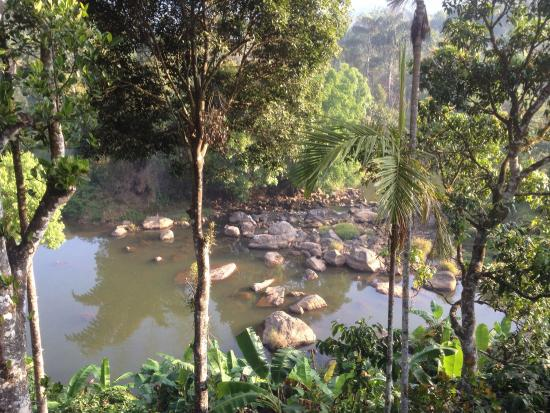 River Rock HomeStay: View from our balcony
