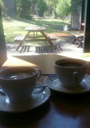 Waterfalls Cafe and Gallery: Our coffees
