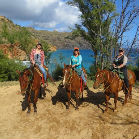 CJM Country Stables: horseback with a view