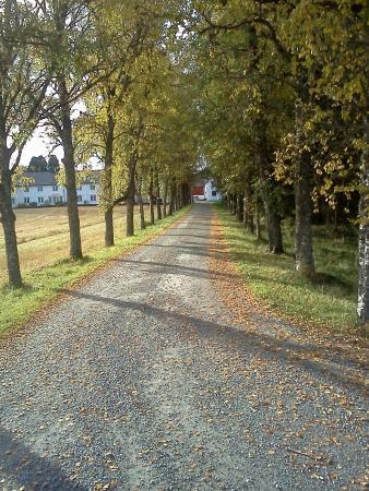 Klaebu Municipality, Norveška: Velkommen