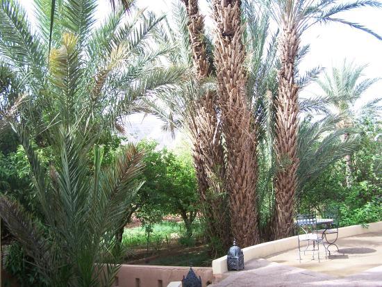 Au jardin de tamnougalt agdz maroc voir les tarifs et for Au jardin review