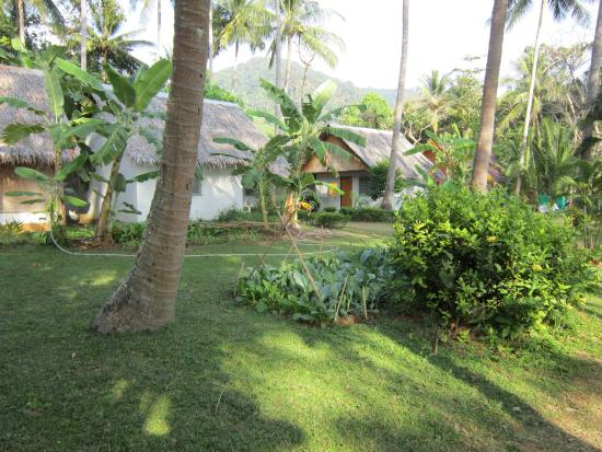Lanta Coral Beach Resort: Hotel