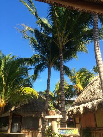 Hostel & Cabanas Ida y Vuelta Camping: la cuisine commune