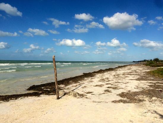 Hostel & Cabanas Ida y Vuelta Camping: Plage derrière les cabanas