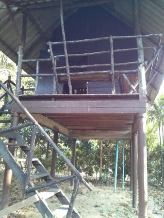 Khao Sok Valley Lodge: Hütte
