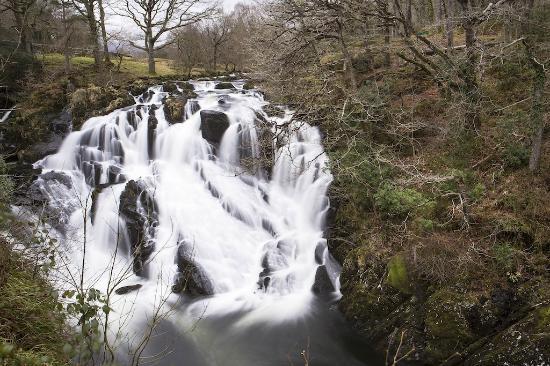 Swallow Falls (Rhaeadr Ewynnol): Swallow Falls