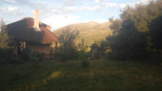 Caballos De Luz: Ranch