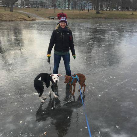 Deering Oaks Park: On the Frozen Pond