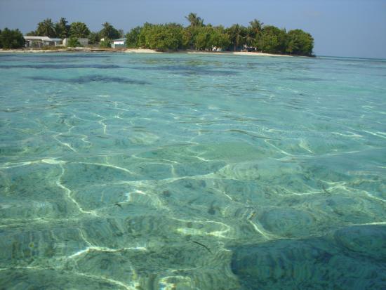 Guraidhoo Vacation Inn : the sea