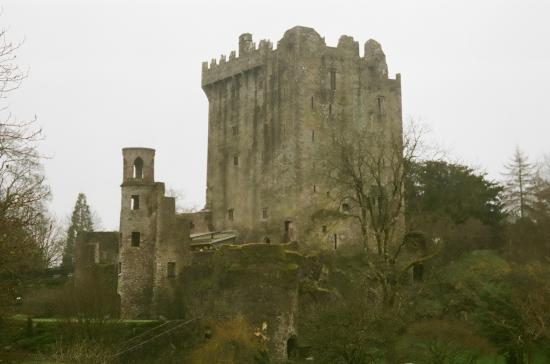 Paddy's Palace: Day tour to Blarney Castle.