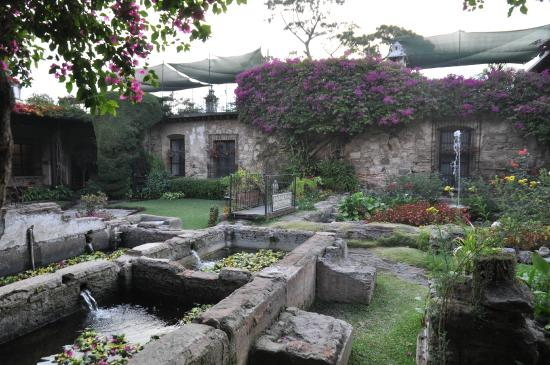 Hotel Posada de Don Rodrigo: giardino