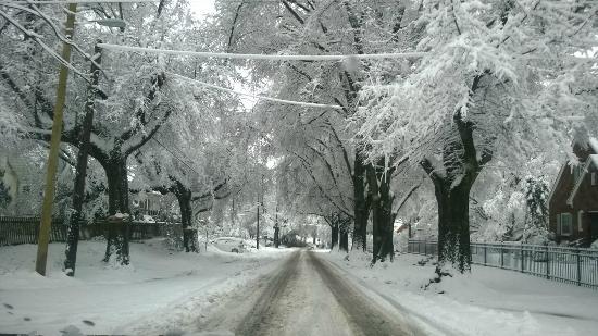 Hampton Inn & Suites Durham North I-85: Snowcapped Morning
