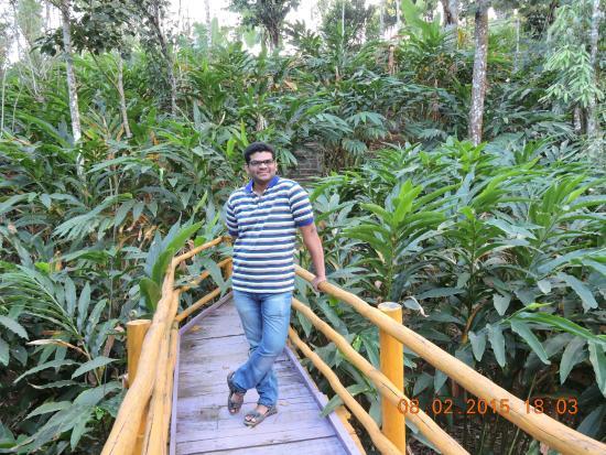 Dream Catcher Plantation Resort: 3
