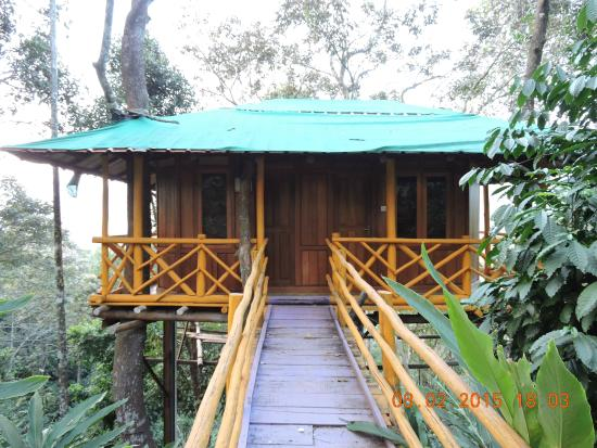 6 - Picture of Dream Catcher Plantation Resort, Munnar ...