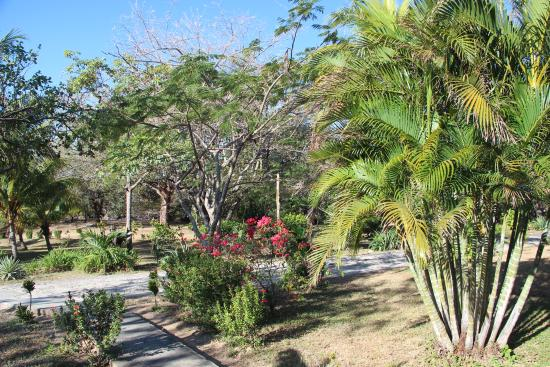 Rancho Curubande' Lodge: nicely landscaped grounds with many birds