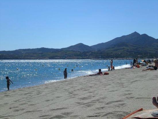 Camping Les Pins: La plage d'Argelès-sur-Mer