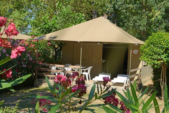 Camping Les Pins: Le Sunlodge