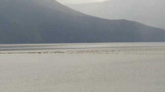 Bore Tide in Turnagain Arm: tide