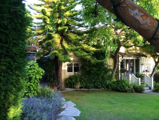 Arabella Laguna: Courtyard