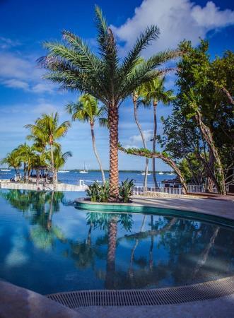 Largo Resort: Beautiful View of Largo's Infinity Pool