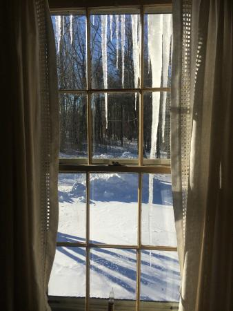 Blandford, MA: View from window...