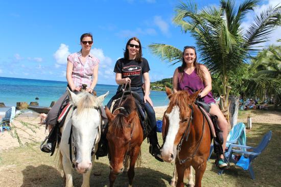 Equus Rides