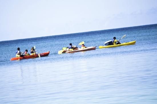 Island Kayaking Adventure