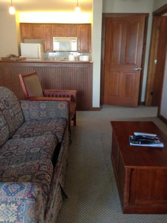 Allegheny Springs: Main living area.  Note sofa bed and carpet issues