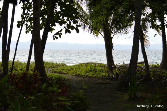 Cabinas Los Cocos : Porch View