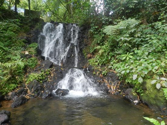 Gros-Morne, Martinique: Vue d'ensemble cascade saut argis