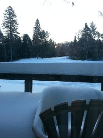 Pinestone Resort and Conference Centre: View out back of cabin