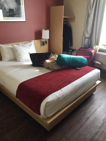 Hotel Lynx : Room