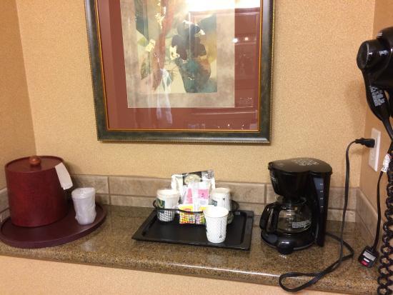 Quality Inn & Suites Airport: Disponible dans la chambre