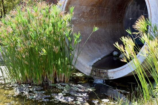 storm drain display - Picture of The Water Conservation Garden, El ...