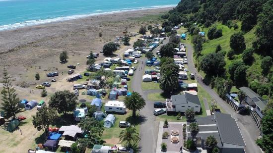 Ohiwa Beach Holiday Park: Outdoor patio and park