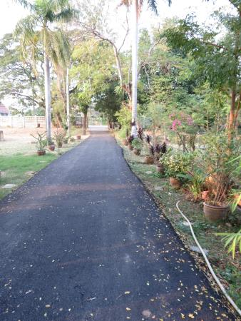 Baan Lotus Guest House : driveway from guesthouse to gate and street