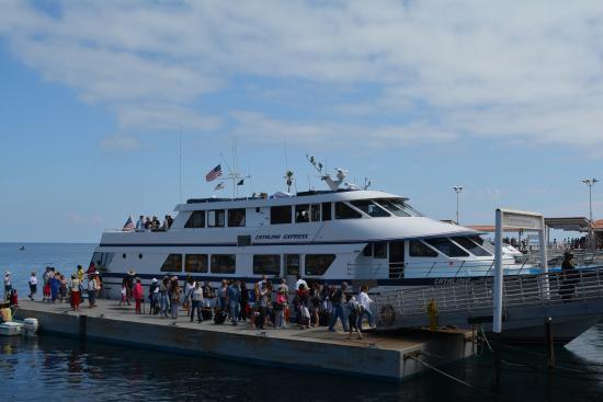 Catalina Island Express Reviews
