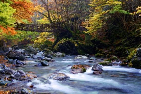 Miyoshi, Japan: Oku--Iya Niju Kazura Bashi(doubel vine bridges)
