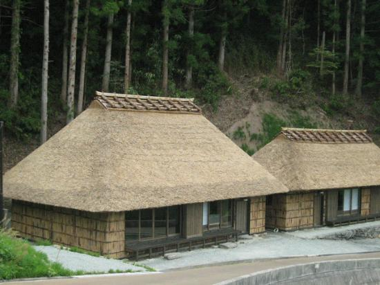 Miyoshi, Japan: Tougenkyo-Iya stay at Thatched Roof Farmhouses