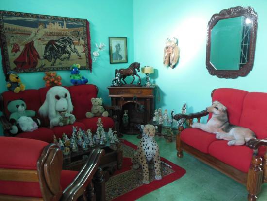 Casa Particular Reyes & Carolina : les peluches de Carolina