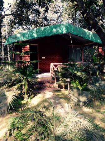 Rooms with private sit out and mango tree